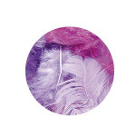 Plume décorative 3-10cm sachet de 10 assorties - Lilas