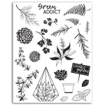 Tampon Crystal' Oh my green 21 pcs